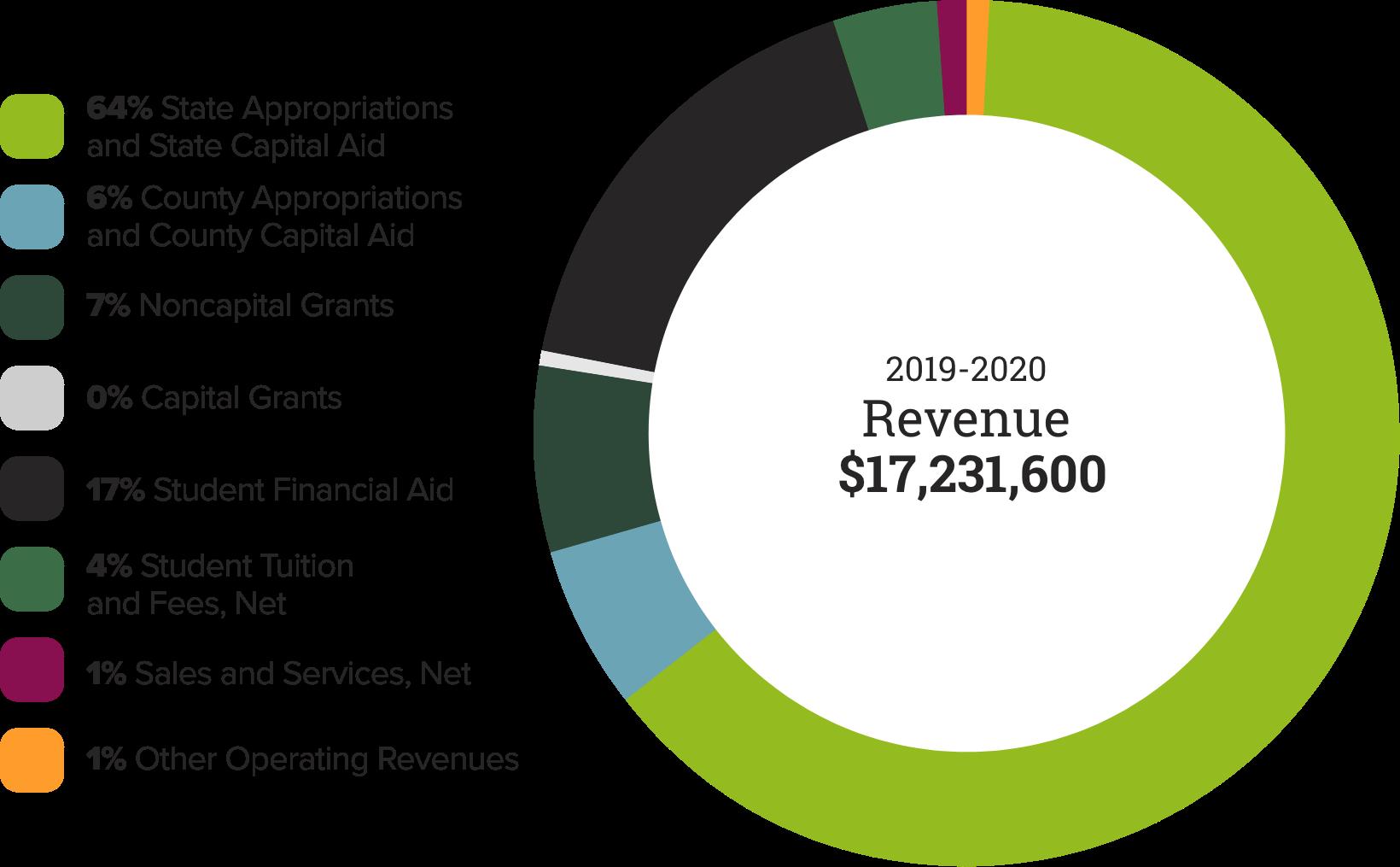 2020 Annual Report Revenue